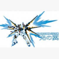 MG 1:100 STRIKE FREEDOM EFFECT WING